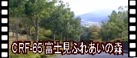 富士見ふれあいの森公園 エアロバイク用動画 CRF-65